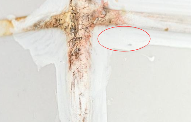 密封胶在生产时可以使用荧光增白剂增白吗?